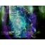 Melee IMBA MODE Warcraft 3: Map image