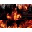 HLW Warcraft 3: Map image