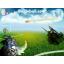 Banjoball Warcraft 3: Map image